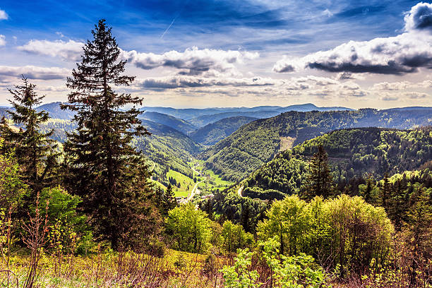 Feldberg Mountain in Spring stock photo