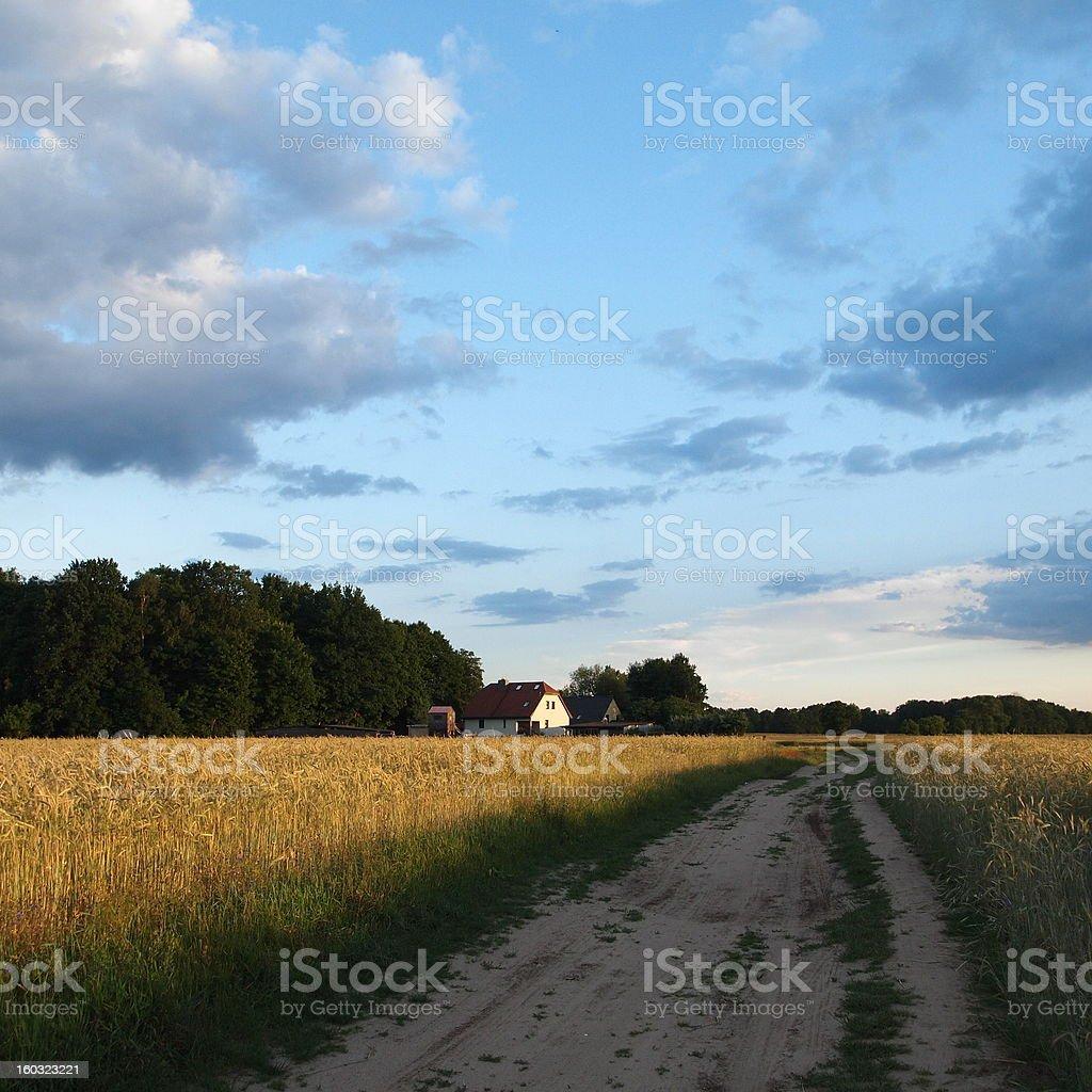 Feldweg stock photo