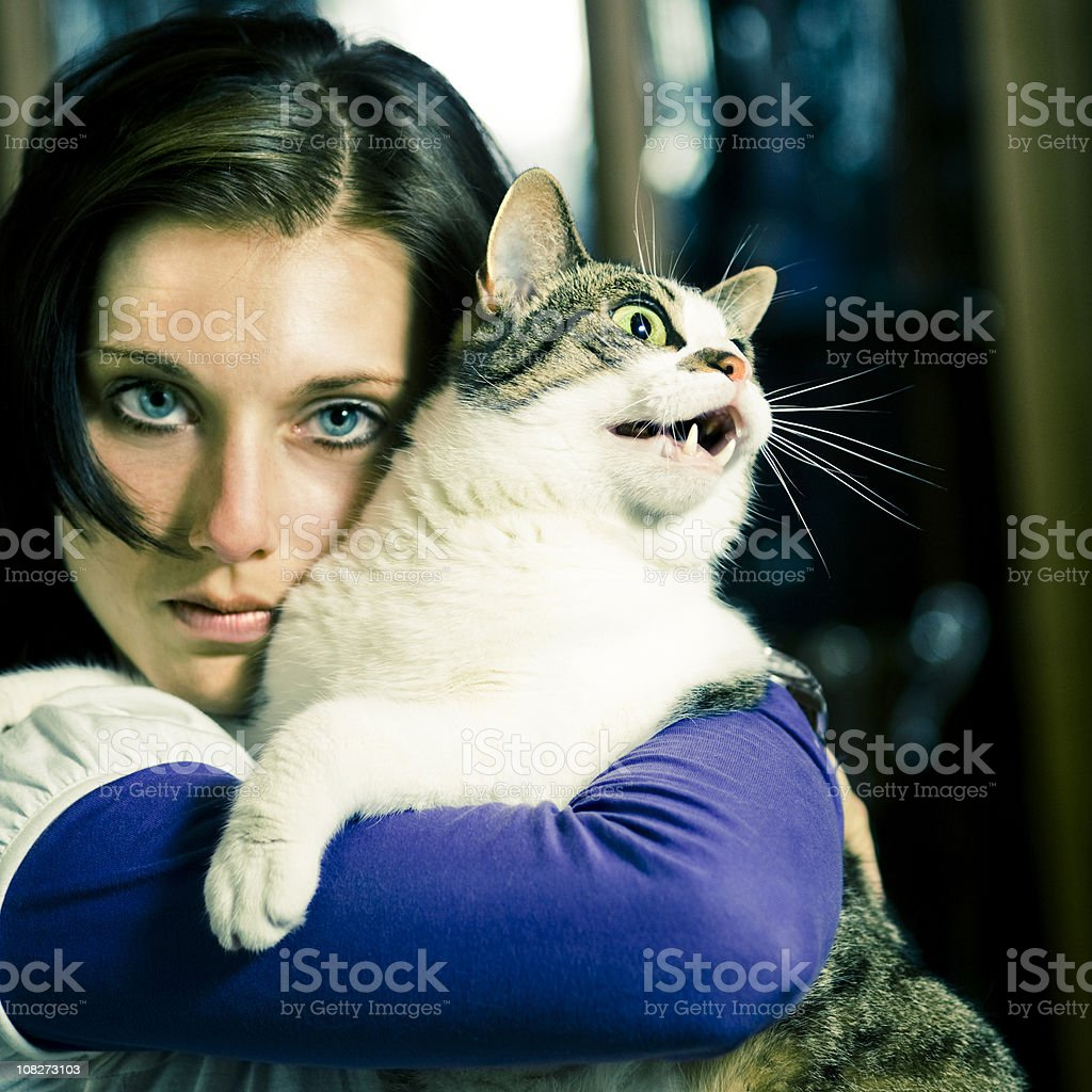Feline Species royalty-free stock photo