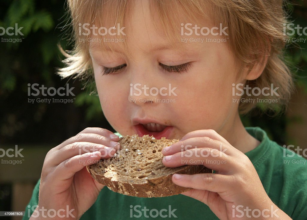 Felix eating wholesome bread stock photo