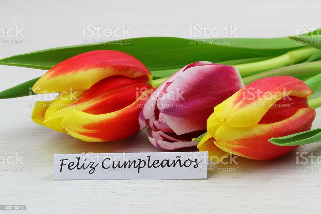 Feliz Cumpleanos Carte Avec Ses Tulipes Colorees Photos Et Plus D