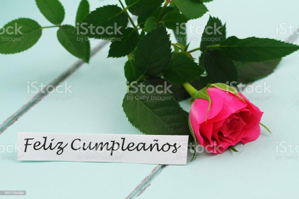 Feliz Cumpleanos Carte Avec Rose Rose Sauvage Photos Et Plus D