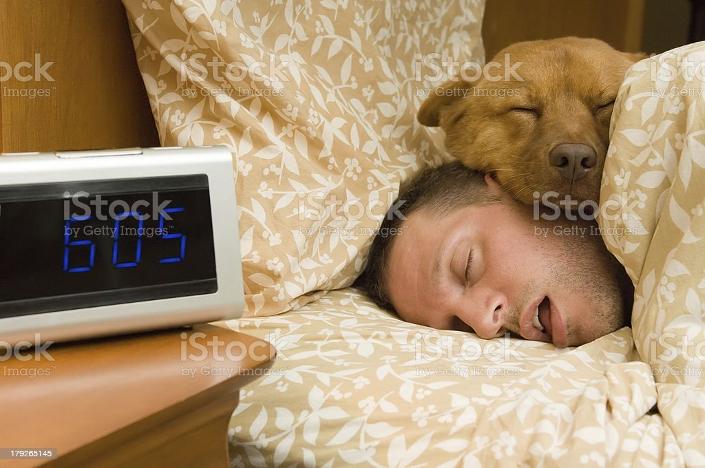 Fell into profound sleep Man and his dog comfortably sleeping in. Adult Stock Photo