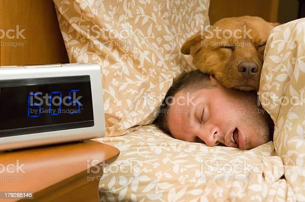 Fell into profound sleep picture id179265145?b=1&k=6&m=179265145&s=612x612&h=73rdv9yt g rq2tiz4hukem7ewgmwbiv bovqkd2fdo=