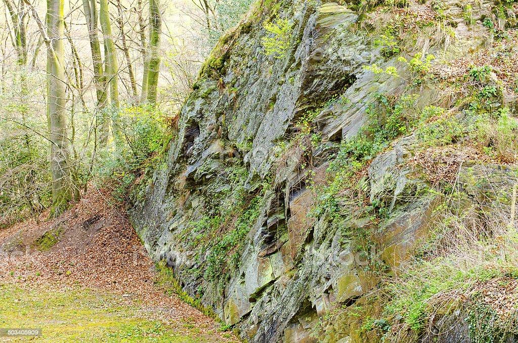 Felswand im Wald stock photo