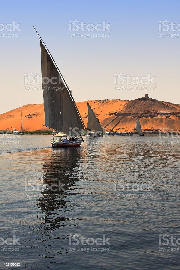 Felucca boats sailing stock photo