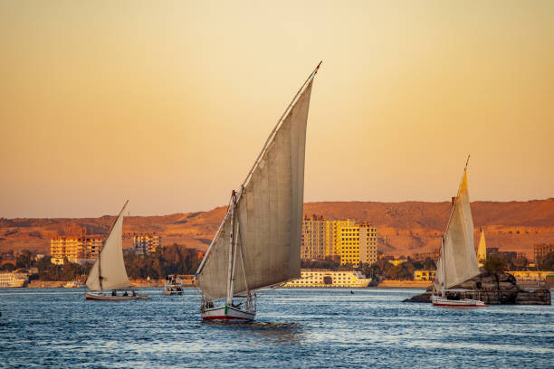 Felucca tourist boats on the river Nile at sunset in Luxor stock photo