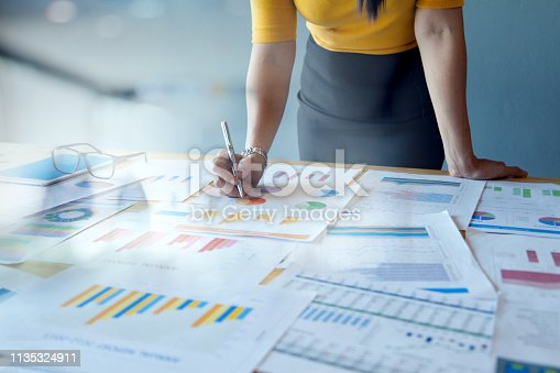 istock Female Accountant or Marketing Check report documents 1135324911