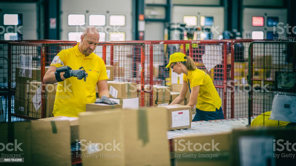 Female and male postal workers inspecting packages royalty-free stock photo