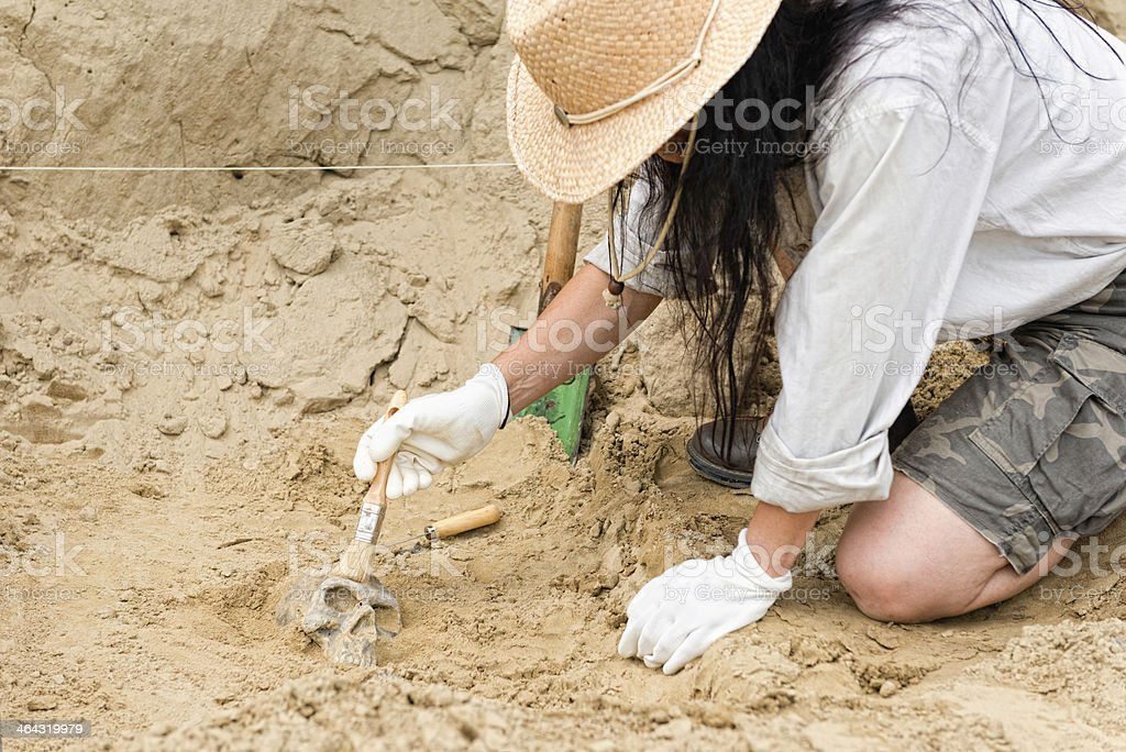 Female archaeologist making discoveries stock photo