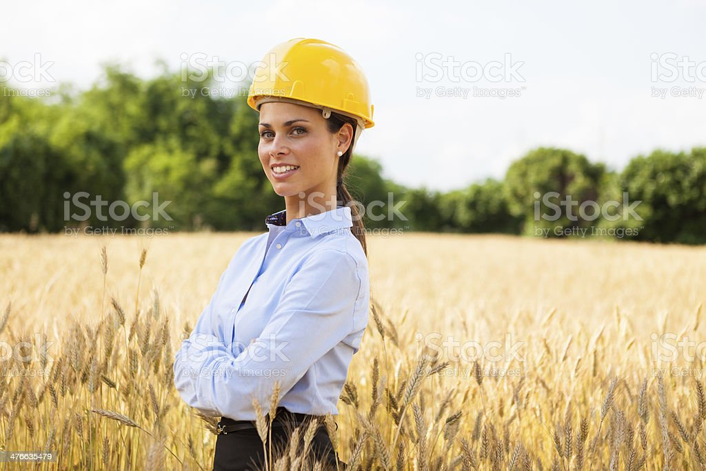 Female architect inside a wheat field royalty-free stock photo
