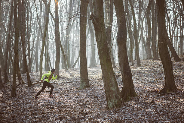 Female athlete running in the forest trail – Foto