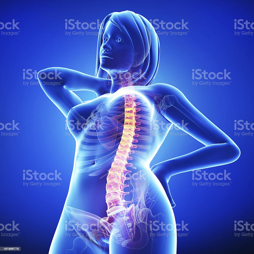 Female Back Pain Anatomy In Black Stock Photo & More Pictures of ...