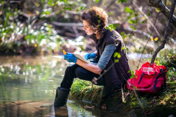 female biology researcher working in nature - ambientalista foto e immagini stock