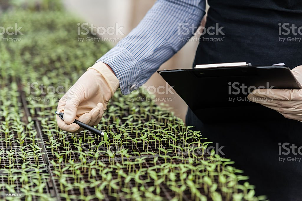 A female biotechnology engineer stock photo