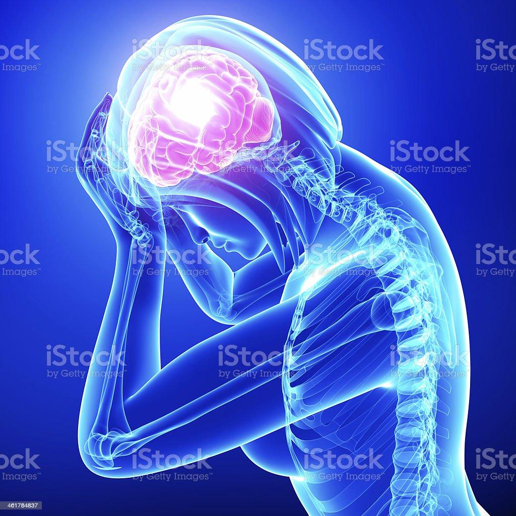 female brain pain stock photo