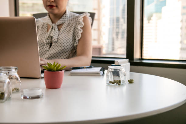 Female Cannabis Entrepreneur working on Marketing for Marijuana Business in Bright, Soft Lit Office stock photo