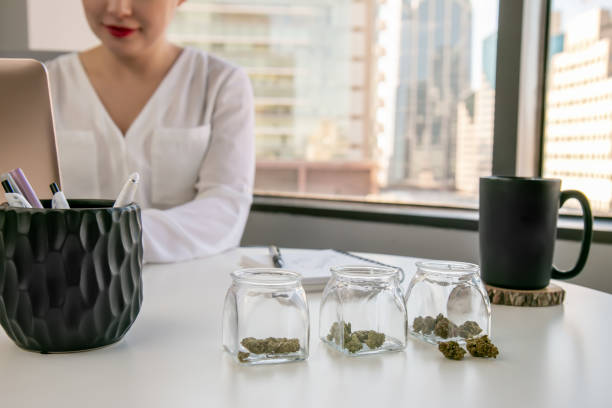 Female Cannabis Entrepreneur working on Marketing for Marijuana Business in Bright, Soft Lit Office with a View stock photo