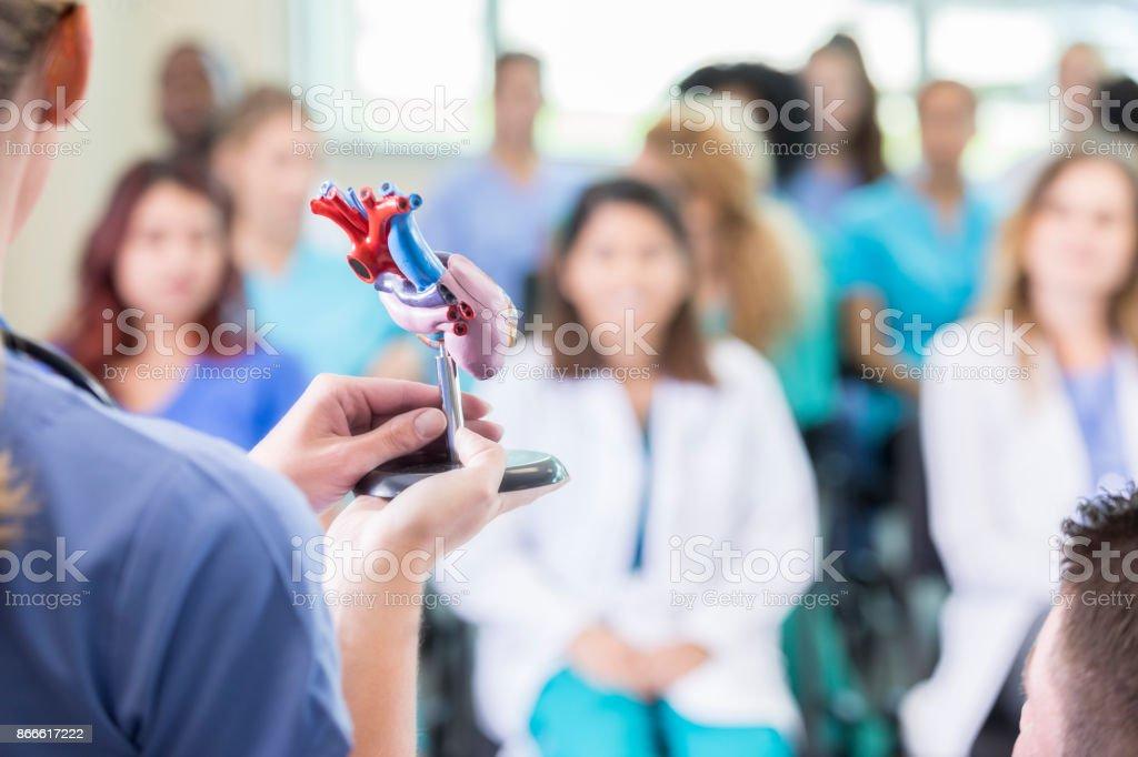 Weibliche Kardiologe Vorlesungen an der medizinischen Fakultät - Lizenzfrei Anatomie Stock-Foto
