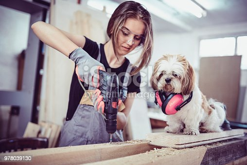istock Female Carpenter Drilling Planks With Help From Dog Assistant 978039130