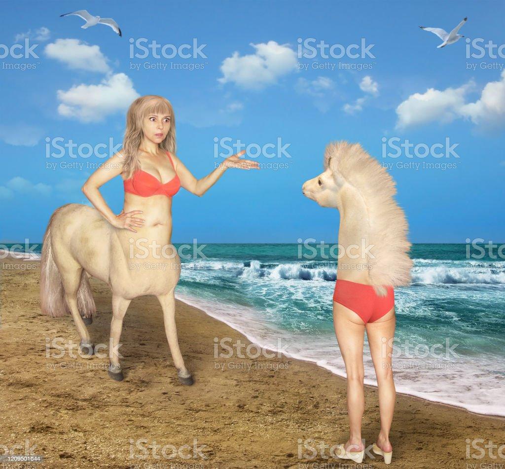 Weiblicher Zentaur trifft fremdes Pferd - Lizenzfrei Abwesenheit Stock-Foto