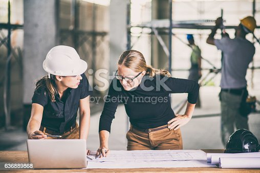 1166176793 istock photo Female construction worker consulting an architect 636889868
