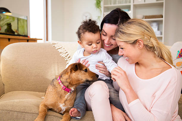 female couple with son and dog at home - lesbian stock photos and pictures