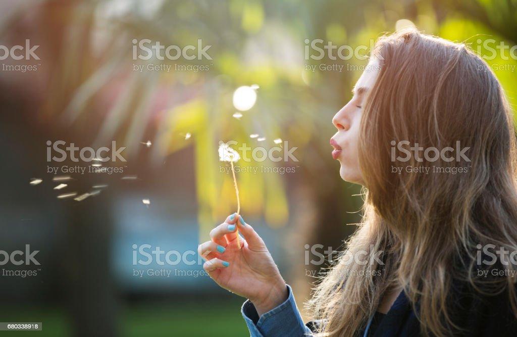 Female dandelion blowing royalty-free stock photo