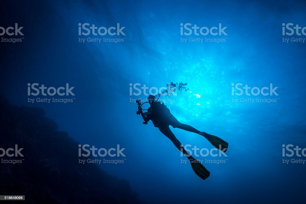 Female Diver - Palau, Micronesia stock photo