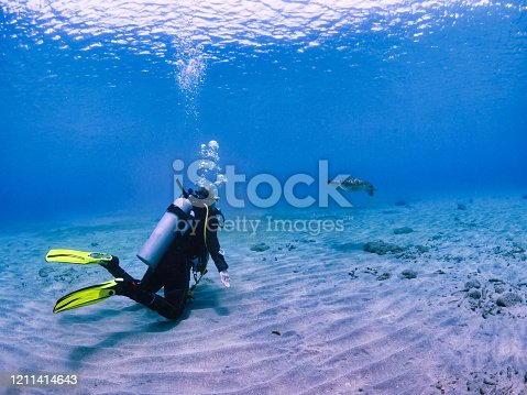 Diver (female) is watching a sea turtle passing by