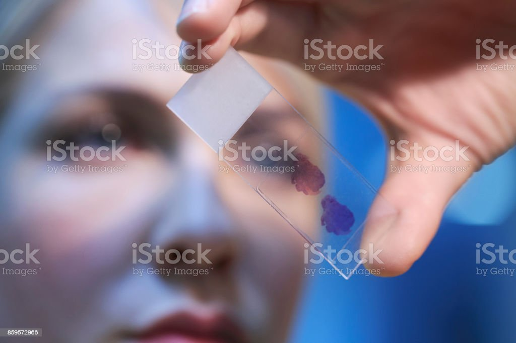 Female doctor doing medical research medical samples, at the lab. Young woman scientist in laboratory. Women in STEM. stock photo