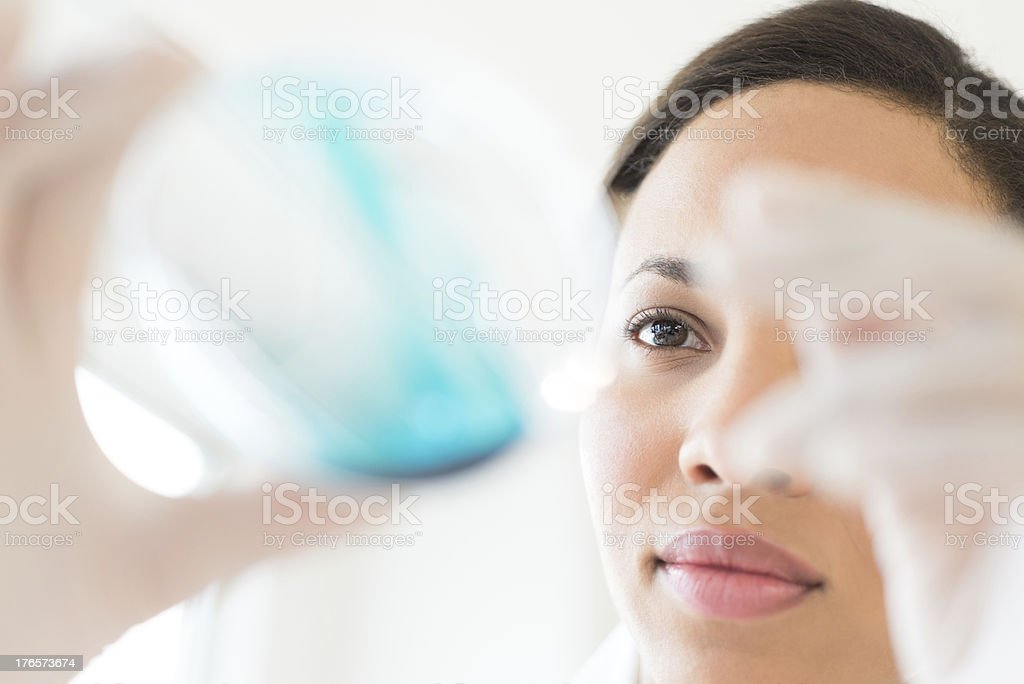 Female Doctor Examining Solution In Laboratory royalty-free stock photo