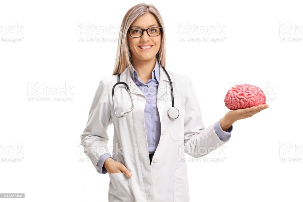 Female Doctor Holding A Brain Model Stock Photo - Download Image Now