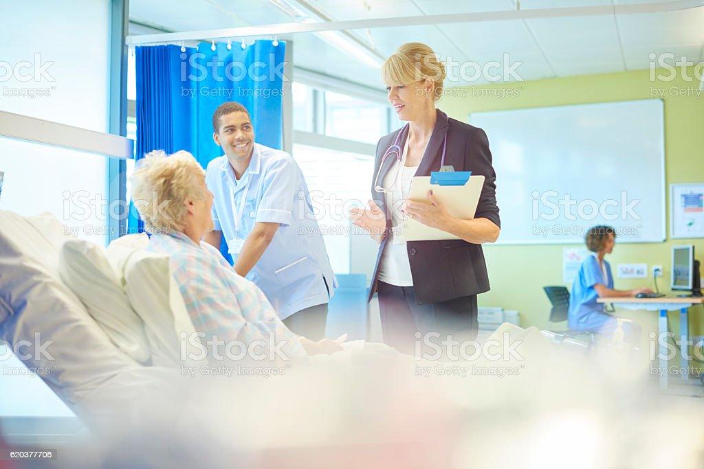 female doctor's rounds zbiór zdjęć royalty-free