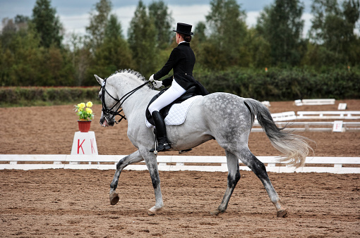 Female dressage rider exercising