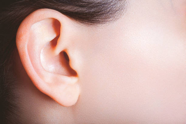 female ear and part of a cheek viewed from a side - ear stock photos and pictures