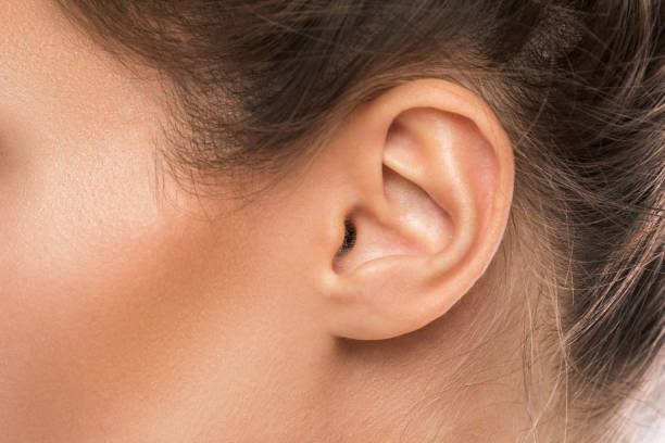 Female ear Close up of female ear ear stock pictures, royalty-free photos & images