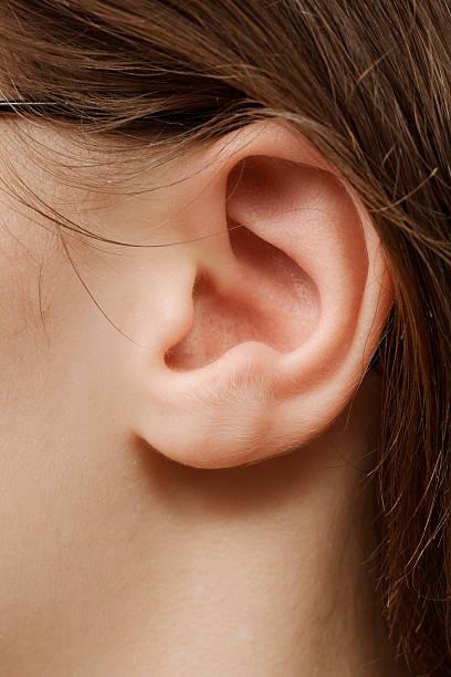 Femme oreille - Photo