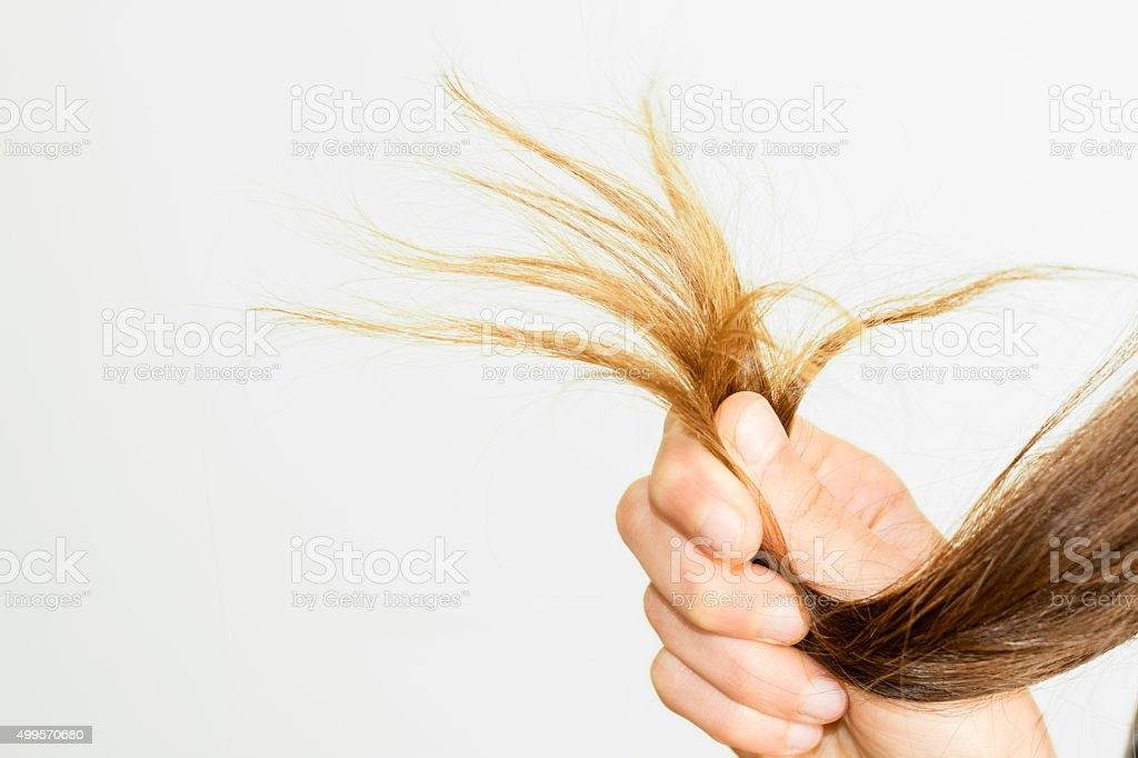 female ends of hair care problems stock photo