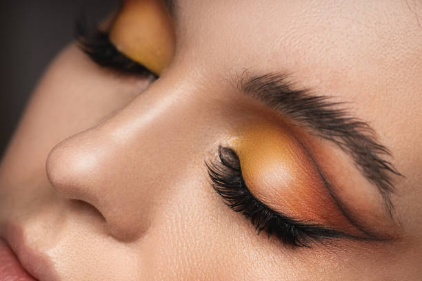 Female eyes with a colorful eyeshadow and eyebrow lamination stock photo