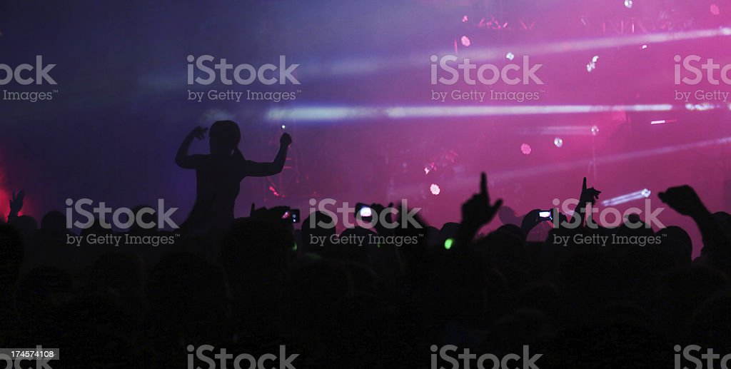 Female fan at the concert royalty-free stock photo