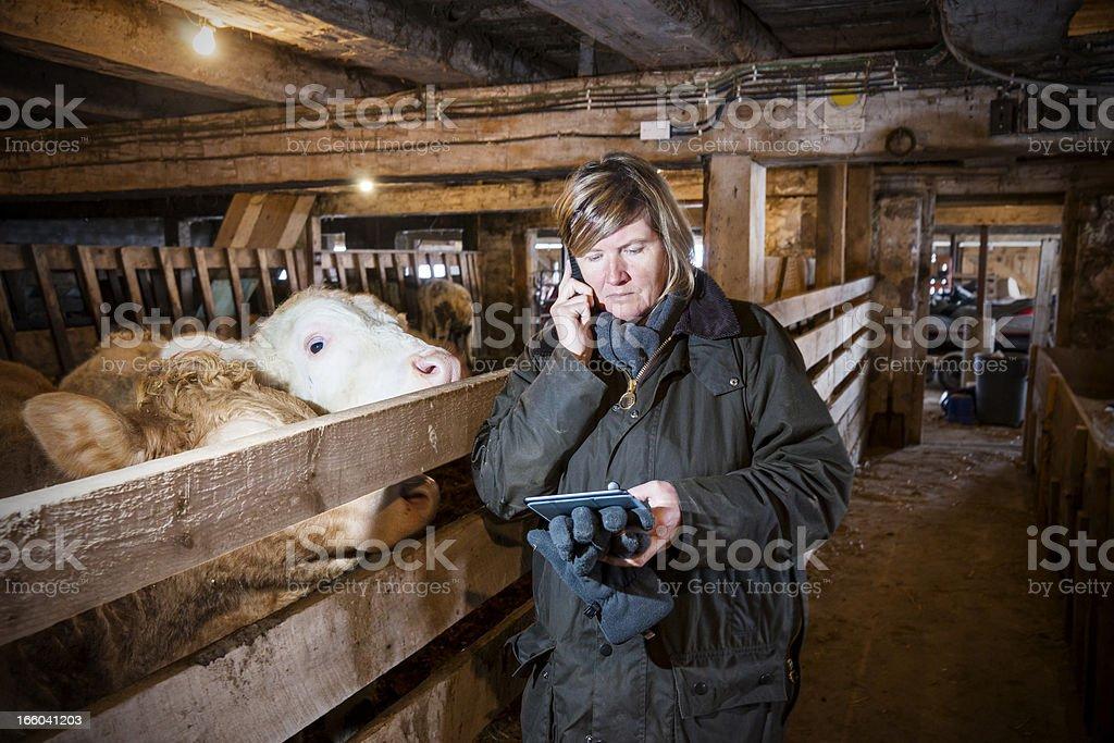 Femme agriculteur dans une ferme à l'aide de smartphone et tablette - Photo