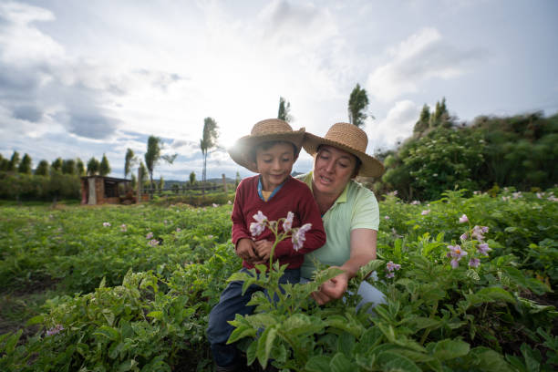 Female farmer teaching her son about harvesting the land stock photo