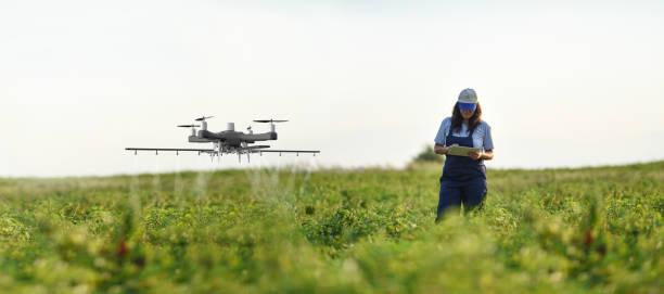 Weibliche Bäuerin mit einer Drohne, um ihre Ernte zu sprühen – Foto