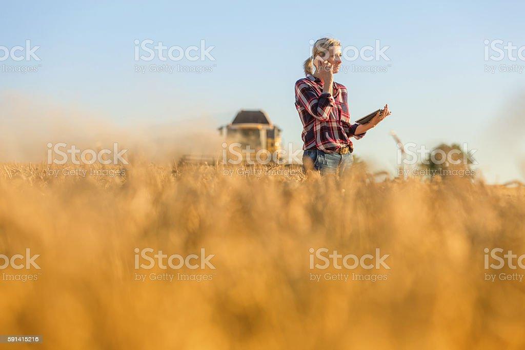 Female farmer walking through field checking wheat crop - Photo