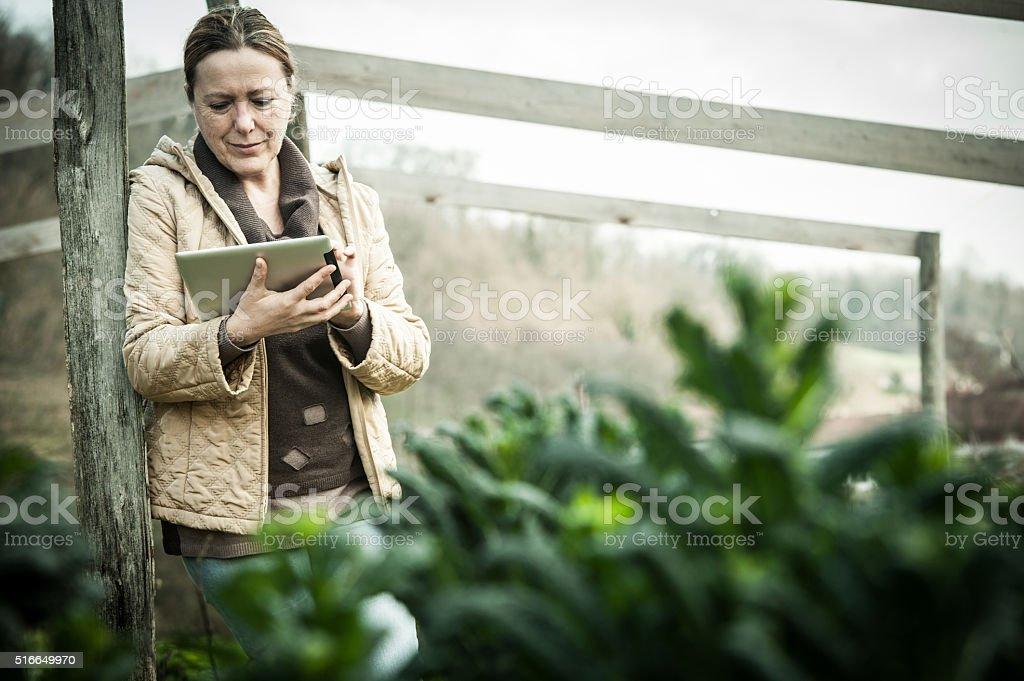 Agricultor mujer con tableta Digital en jardín de vegetales - foto de stock