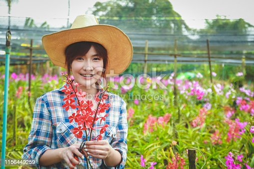 Asian women wearing long sleeved plaid shirts. Orchid Garden Owner Export sales abroad She stands to take care of them.