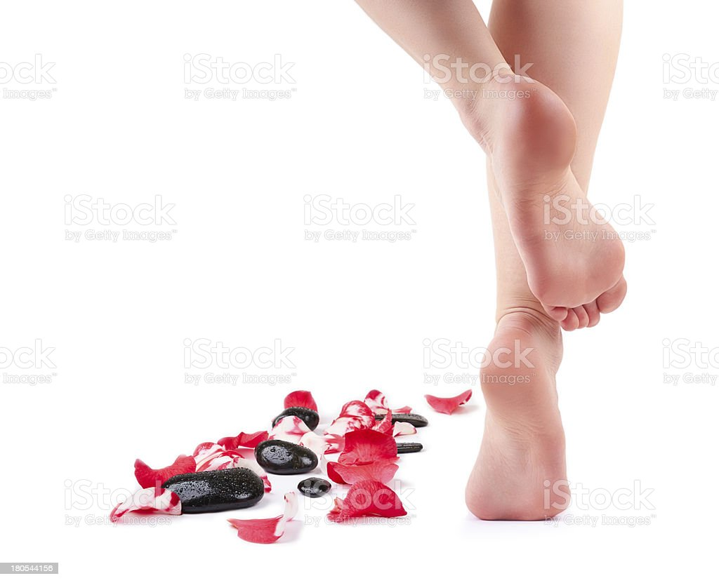 Female feet and Spa stones with rose petals royalty-free stock photo