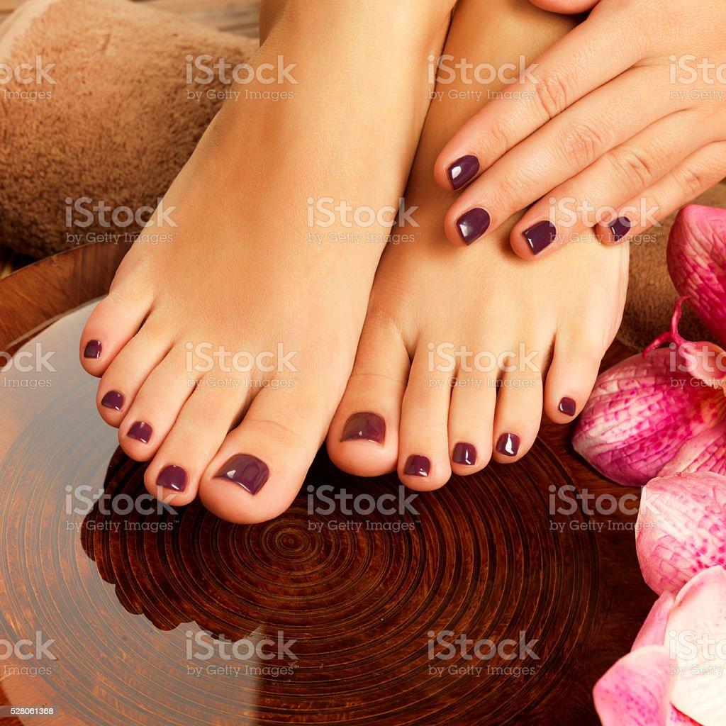 female feet at spa salon on pedicure procedure stock photo & more
