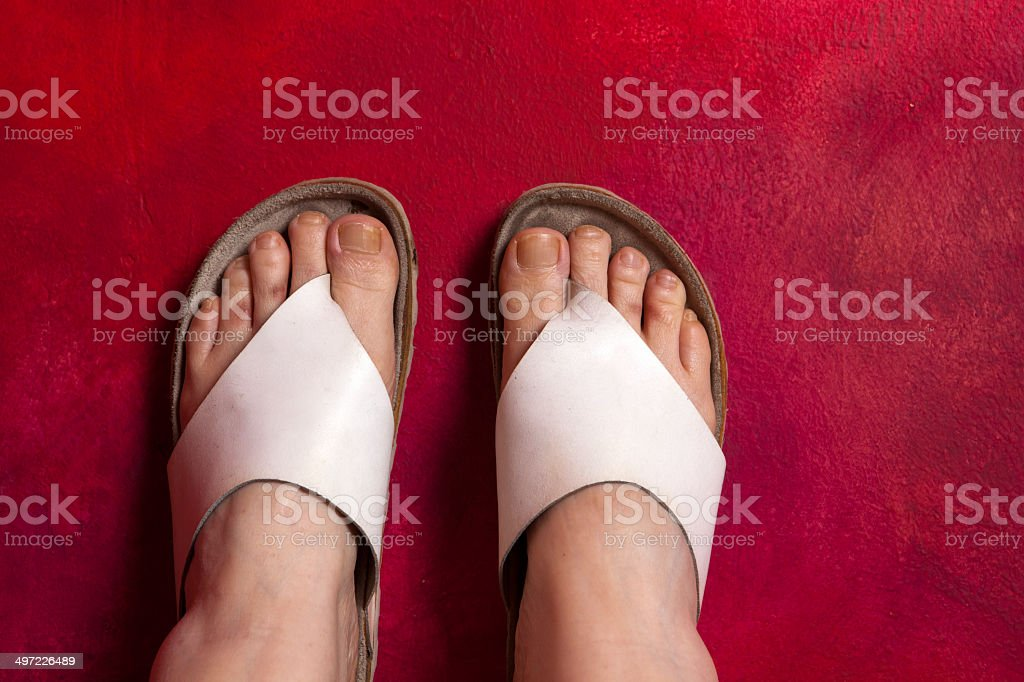 Female feet in sandals, stock photo